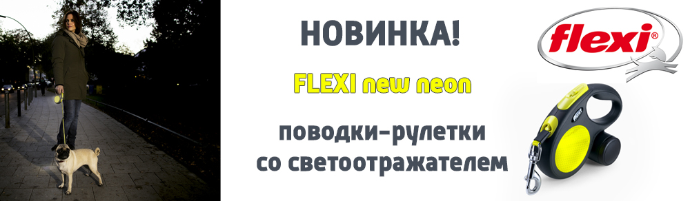 flexibannerneon2019