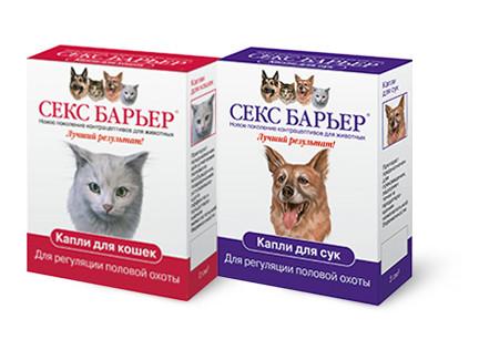 Новый секс барьер для кошек