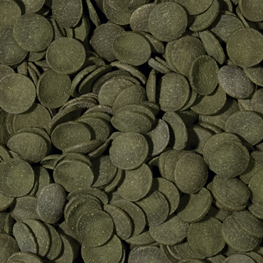 green-algae-wafers-100