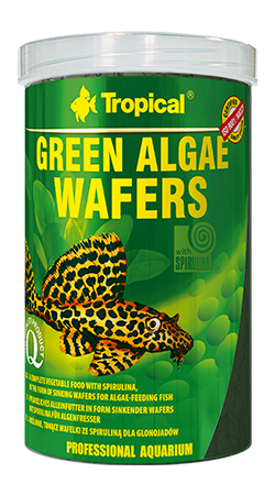 green-algae-wafers 1000