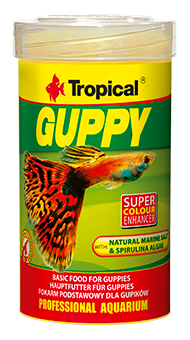 guppy-100-ml
