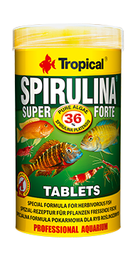 super-spirulna-forte-tablets-250-ml